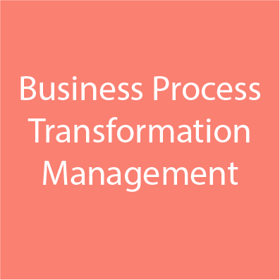 Business Process Transformation Management